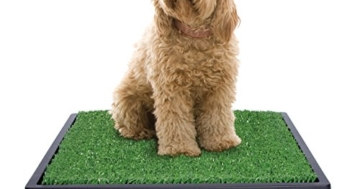 Vorteile der Hundetoilette